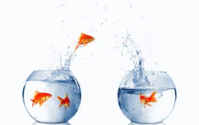 C2M:  Managing Change and Continuous Improvement